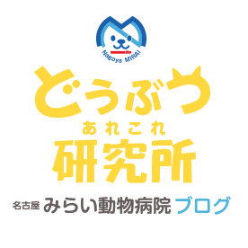 名古屋 みらい動物病院 オフィシャルブログ